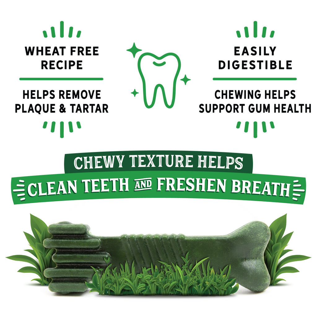 Dr. Dental Fresh Chews Large Dental Dog Treats 12ct
