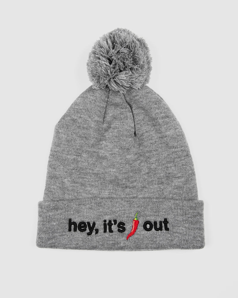 Chilly Grey Beanie
