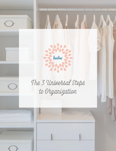 3 Universal Steps to Organization Companion eBook