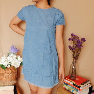 Chambray Little Dress