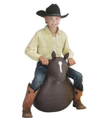 Bouncy Horse Toy