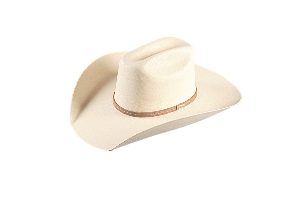 David Crockett Straw Hat