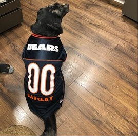 Chicago Bears Dog Jersey Personalized NFL Pet Clothes – Tags4Paws e43f7317f