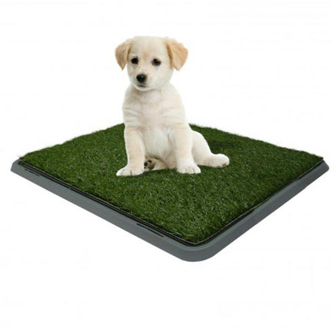Dog Potty Patch 40cm x 50cm (Free Shipping)