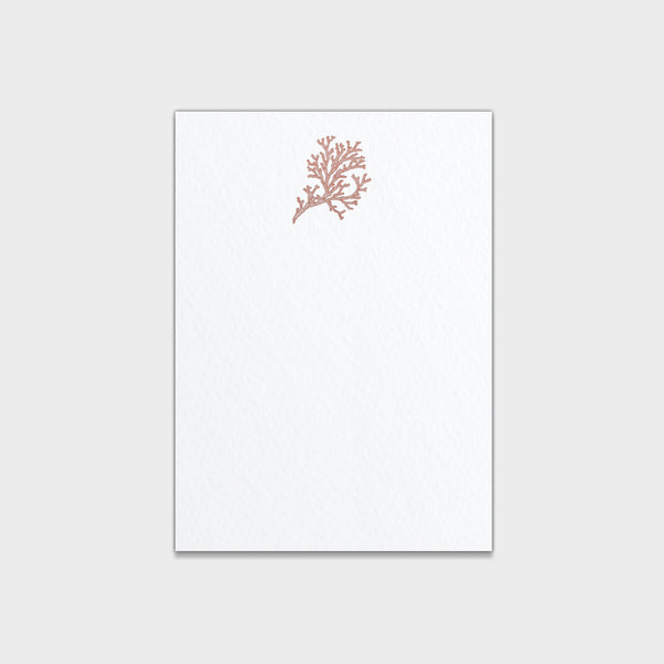 Coral Small Note Cards