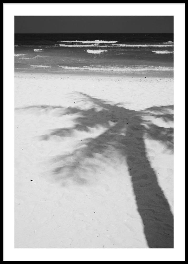 PALM SHADOW POSTER