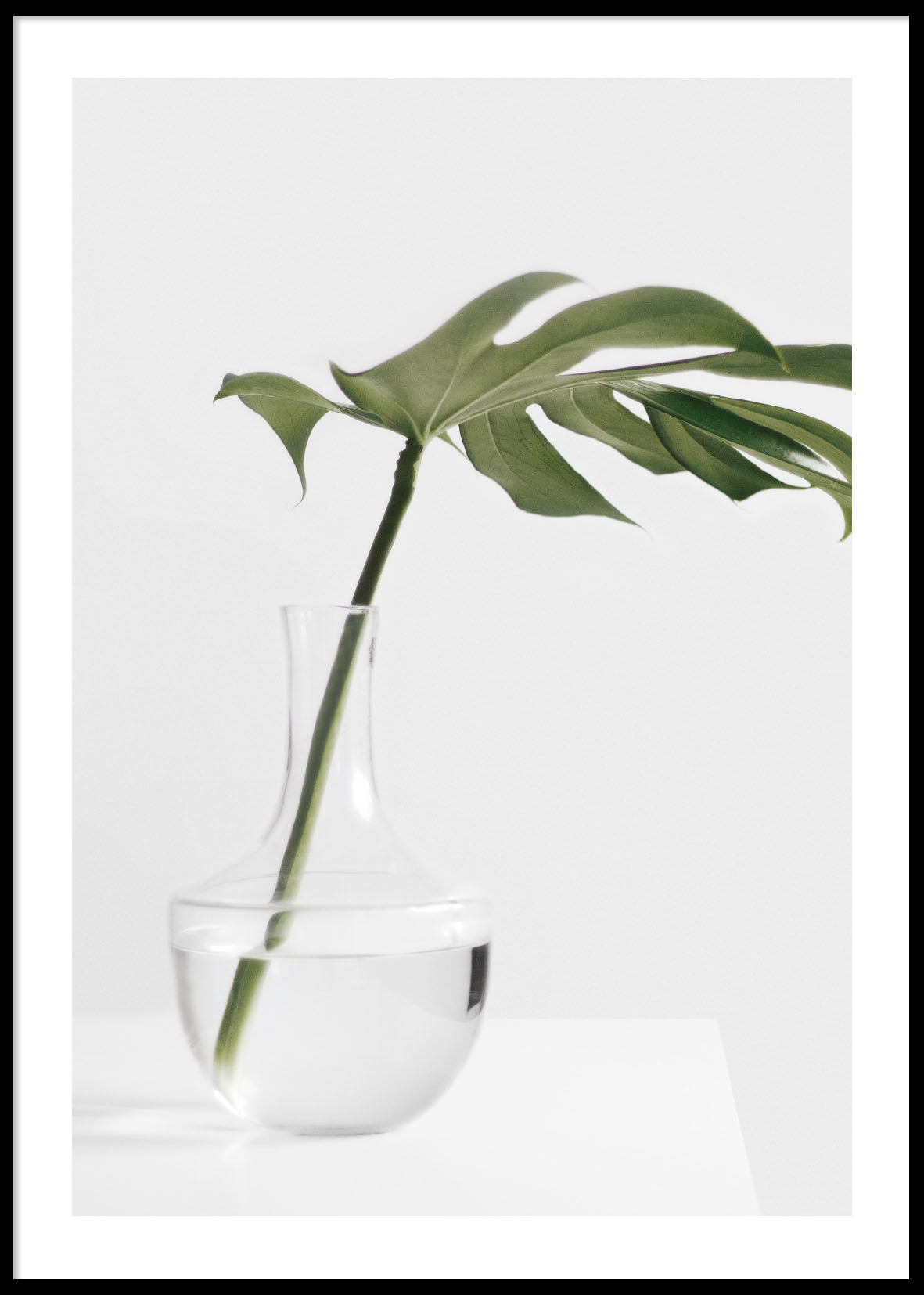 MONSTERA IN VASE POSTER