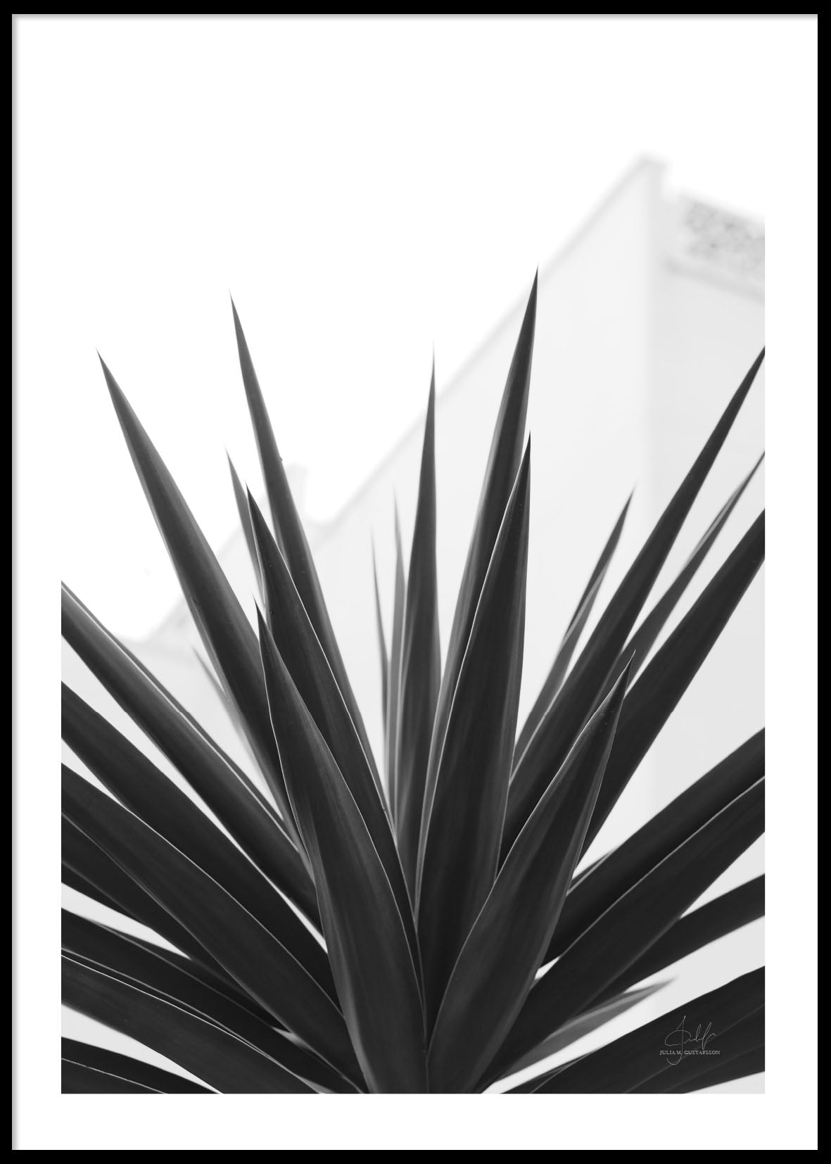 PLANT TEXTURE SPAIN POSTER