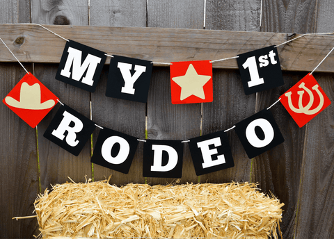 rodeo party theme