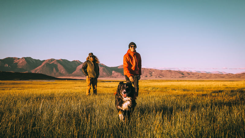 two good friends and their four legged companion hike through a mountain plain