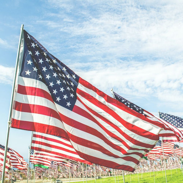 Low angle shot of hundreds of American flags posted in the grass with a blue sky in the background
