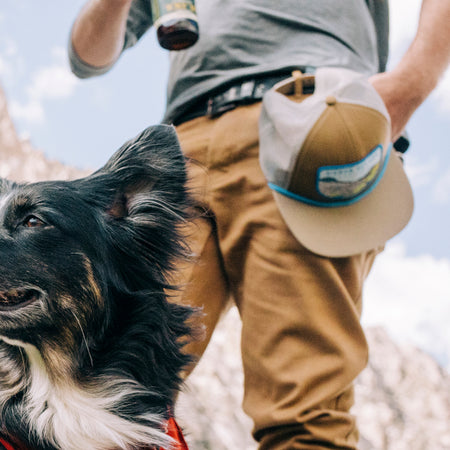 closeup of a hat stored on a man's belt loop with his dog looking off into the distance
