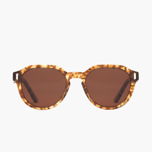 Goodson Eco Tortoise // Brown Polarized Lens