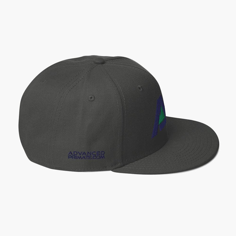 AP Snapback Hat--Charcoal--side view