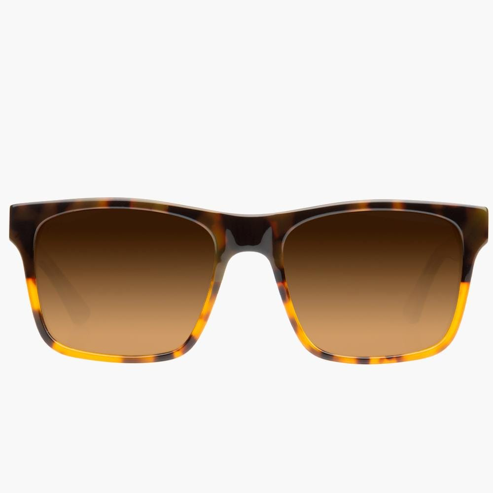 Rainier Tortoise Split/Brown Polarized Lens--Front
