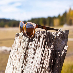 Scout Eco Black // Polarized Lens