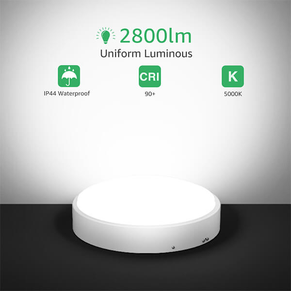 32W LED Ceiling Light Frosted Glass Shade Aluminum Housing 180W Equiv. 2800lm Round Ceiling Lighting IP44, 5000K Daylight White for Kitchen, Closet, Laundry Room, Basement, Hallway Bathroom(US Standard)