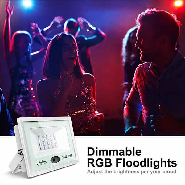 35W RGB LED Floodlight IP66 Waterproof  with Last Memory Function and Dimmable Remote Control(US Plug)