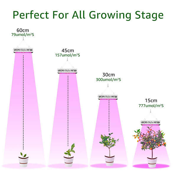 300W LED Grow Light, Full Spectrum Plant Lights with VEG BLOOM Switches 3 Modes Lighting UV IR Plants Growing Lamp for Indoor Veg Flower Hydroponic Plants at all Growth Periods