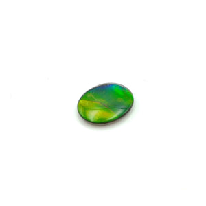 Ammolite Cabochon AA 8x10mm - The Jade Store