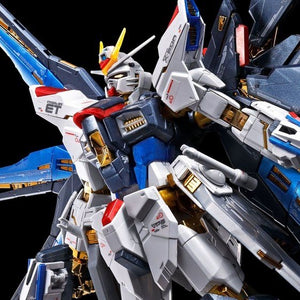 RG 1/144 Strike Freedom Gundam [Titanium Finish ver.] (February & March Ship Date)