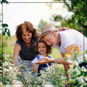 a mother, daughter and grandfather, 3 generations, enjoying flowers