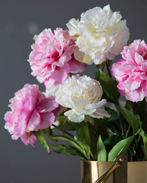 beautiful image of pink and white peonies