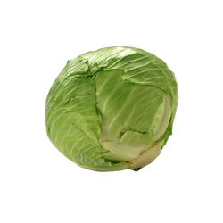 Cabbage Green 1 head