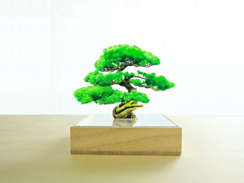 Acrylic Bonsai Mini