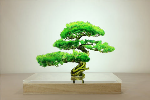 Acrylic Bonsai