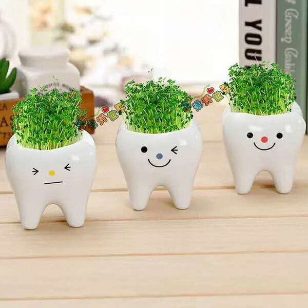 Cute Teeth Expression And Stars Plant Flower Pot Negative Mini Grass Doll Potted Plant For Home Office Decor