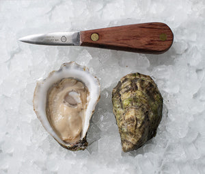 Marion Oysters from Marion, MA (Large)