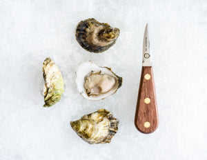 Island Creek Oysters - 50 Count