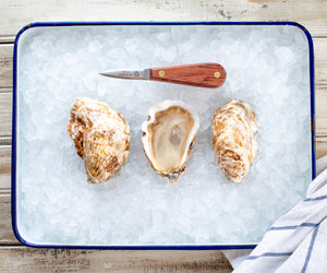 Sweet Neck Oysters from Martha's Vineyard