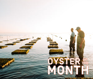 Oyster of the Month Club