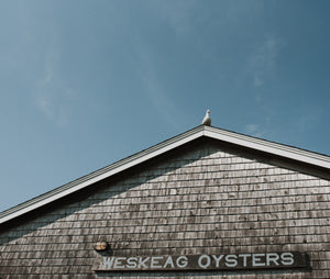 Weskeag Oysters from South Thomaston, Maine