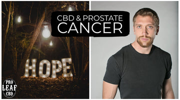 CBD & PROSTATE CANCER