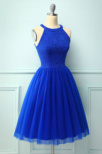 Royal Blue Halter Lace Dress