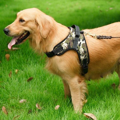 Heavy Duty Dog Harness (small to large sizes)