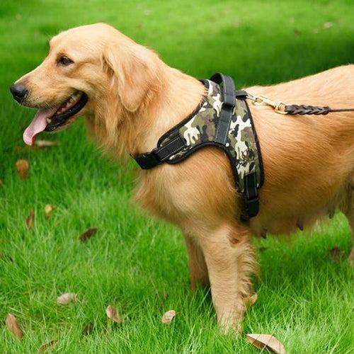 Heavy Duty Dog Harness - For small to big dogs