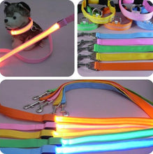 Load image into Gallery viewer, LED Light Up Dog Leash