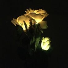 Load image into Gallery viewer, Waterproof Solar Powered Rose Flower Lights (2 PACK)