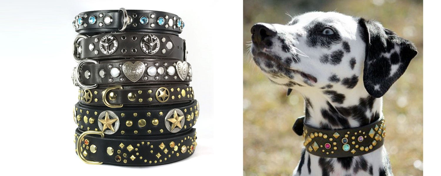 custom leather dog collars nameplates designer western bling studded
