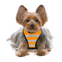 Safety WagSwag Harness Set