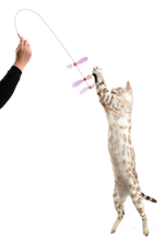Load image into Gallery viewer, rustlin butterfly teaser toy with cat playing