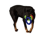 Load image into Gallery viewer, large dog carrying 3 ropes in mouth
