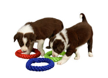 Load image into Gallery viewer, two puppies sniffing rope toys