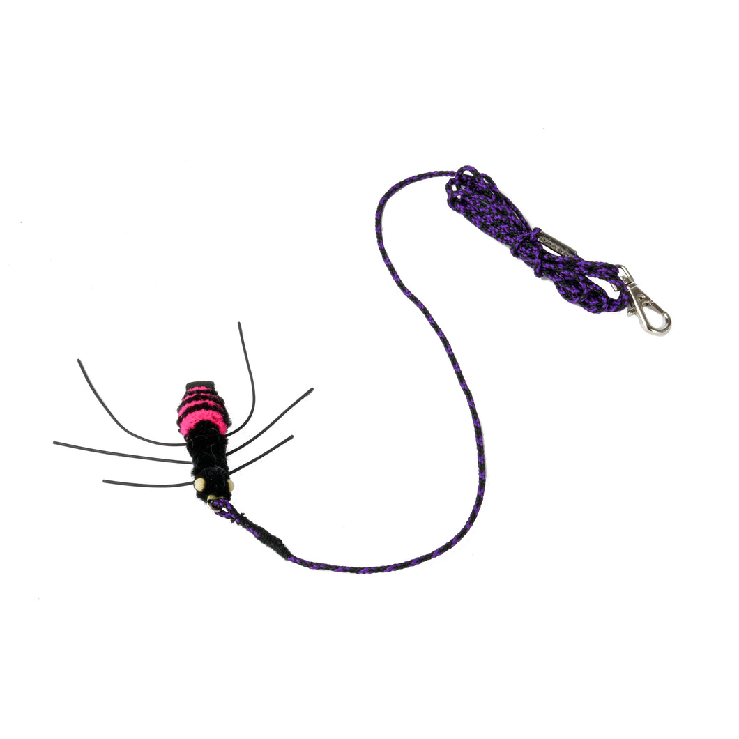 Catapider Cat Toy