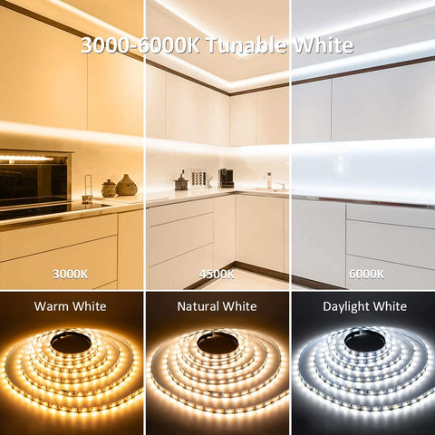 79ft 24M Tunable White Strip Lights