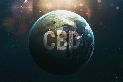 Legal Status Of CBD Around The World – Plain Jane